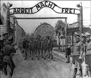 Nazi Oak Auschwitz Gate